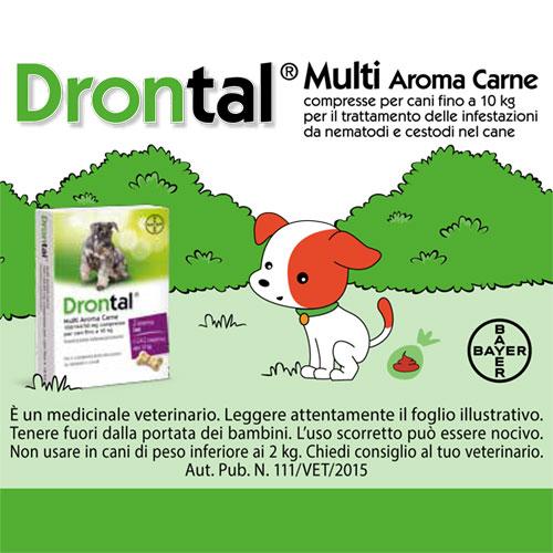 Bayer-Drontal